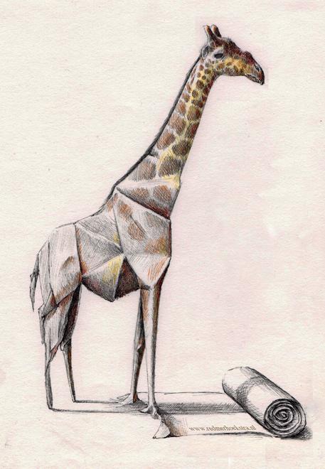 redmer hoekstra 2009 13 origami giraffe