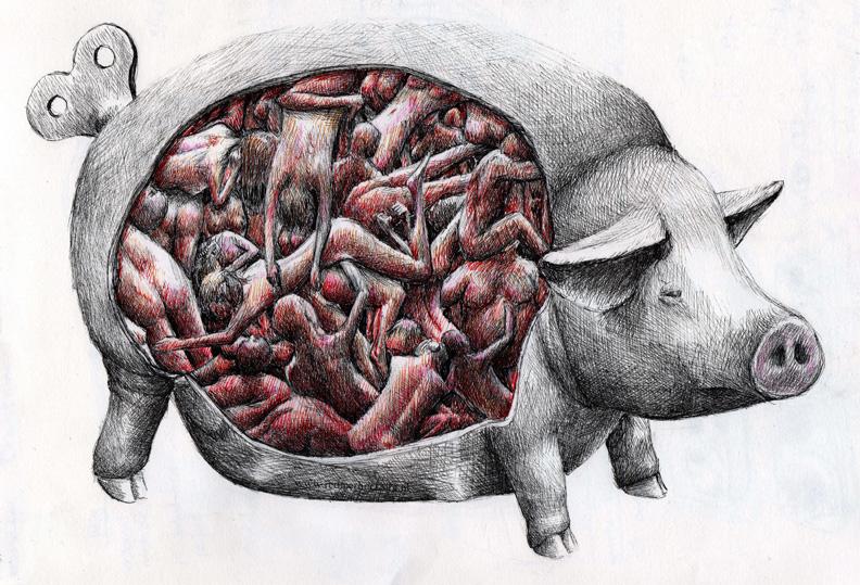 redmer hoekstra 2009 14 varken bioindustrie