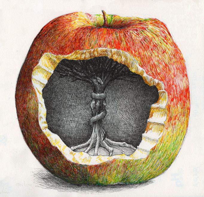 redmer hoekstra 2009 20 appel