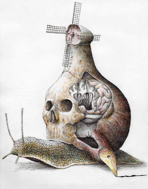 redmer hoekstra 2009 25 schedel slak