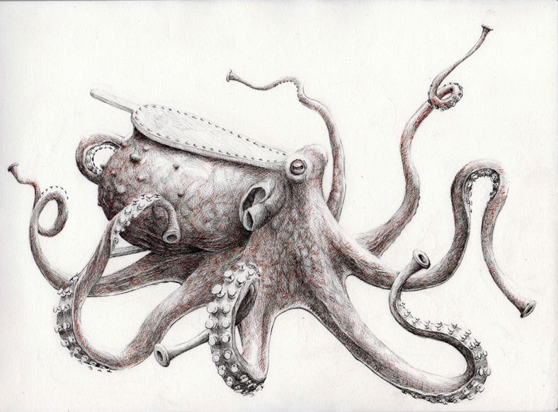 redmer hoekstra 2009 44 octopus