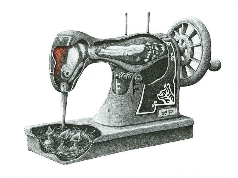 redmer hoekstra 2009 45 naaimachine specht