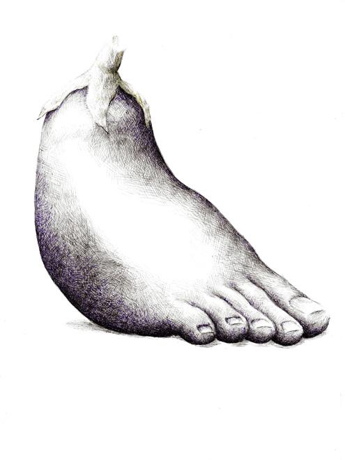 redmer hoekstra 2009 48 aubergine voet