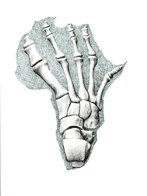 redmer hoekstra 2009 52 voet afrika