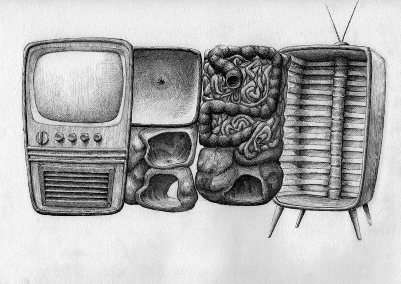 redmer hoekstra 2009 9 televisie anatomie