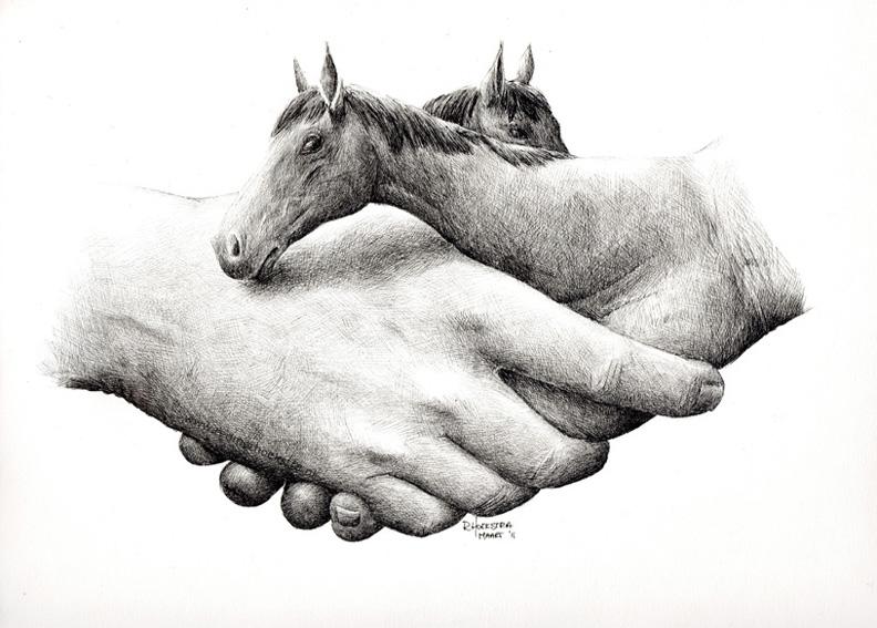 redmer hoekstra 2011 6 paarden handen