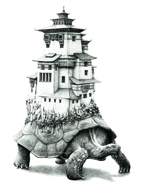 redmer hoekstra 2012 11 schildpad dzong