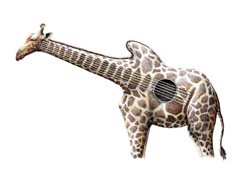 redmer hoekstra 2012 25 gitaar