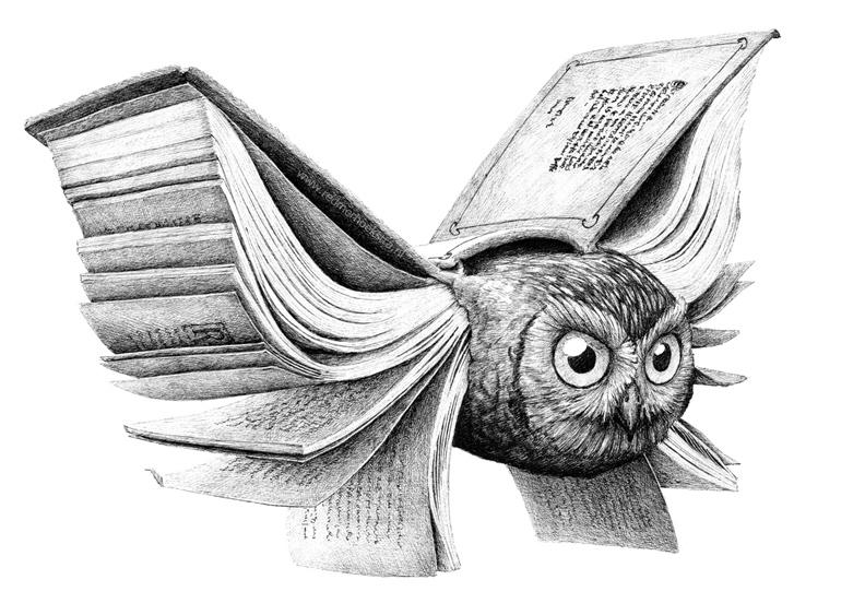 redmer hoekstra 2012 27 owl book uil boek