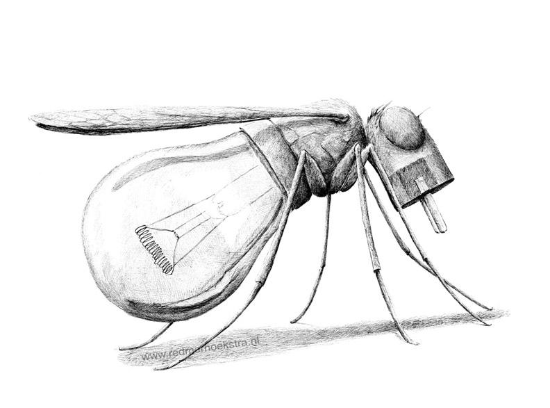 redmer hoekstra 2013 18 mug
