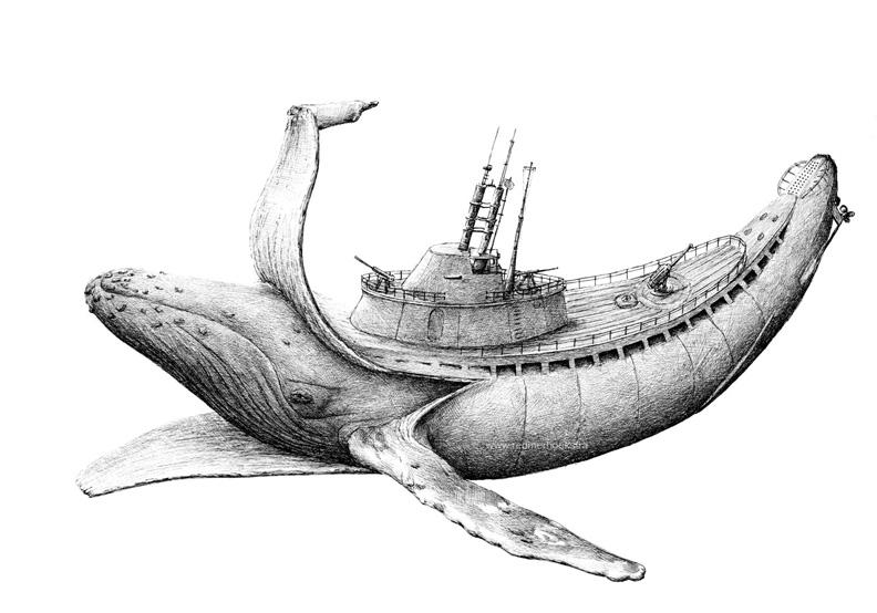 redmer hoekstra 2013 24 walvis