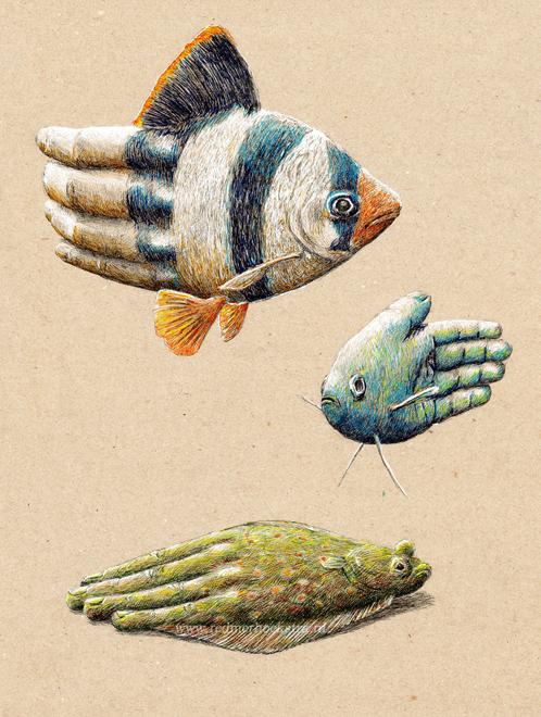 redmer hoekstra 2013 28 vis handen