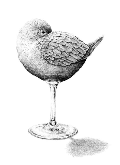 redmer hoekstra 2013 6 bird