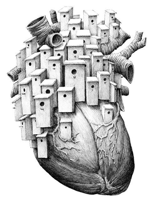redmer hoekstra 2014 5 hart