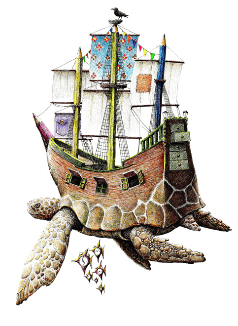 redmer hoekstra 2014 7 schildpad