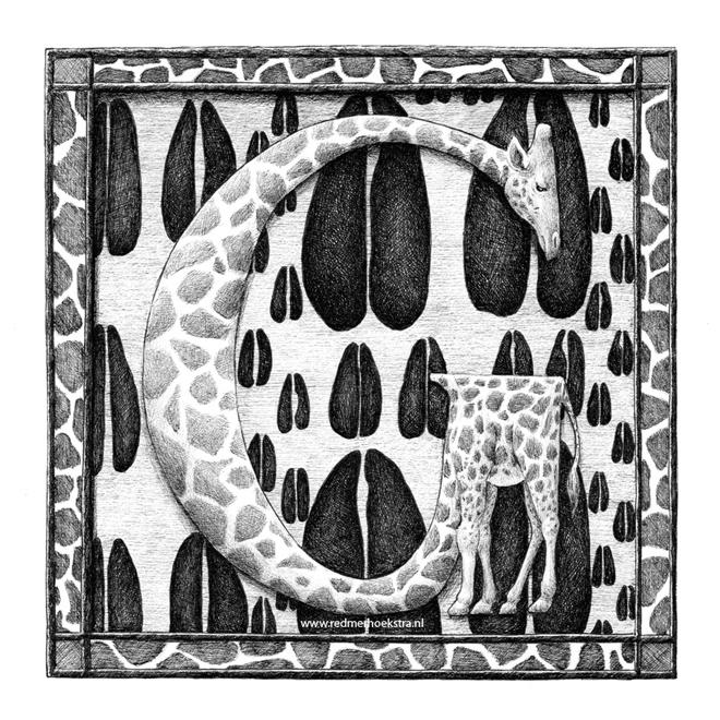redmer hoekstra 2015 4 giraf
