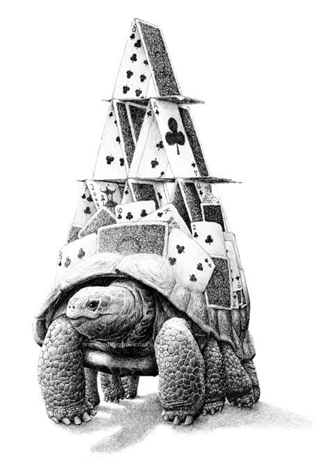 redmer hoekstra 2016 3 schildpad kaart